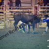 1-20-2018 Sundance Rodeo (Bull Riding Short-Go) (96 of 98)