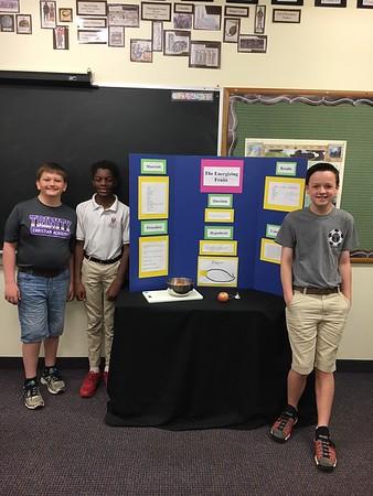 6th grade science fair