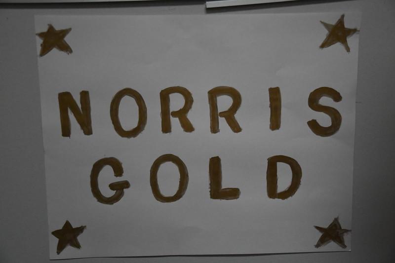 02-16-18_Gold-002-GA