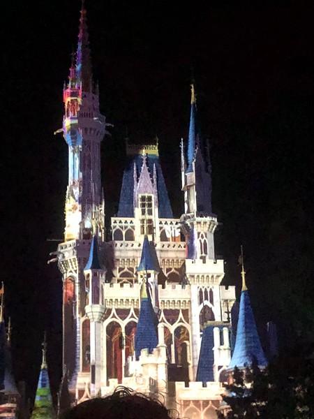 Disney Band Trip