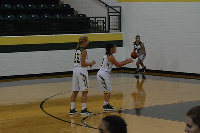 Lady Jags v Meadow