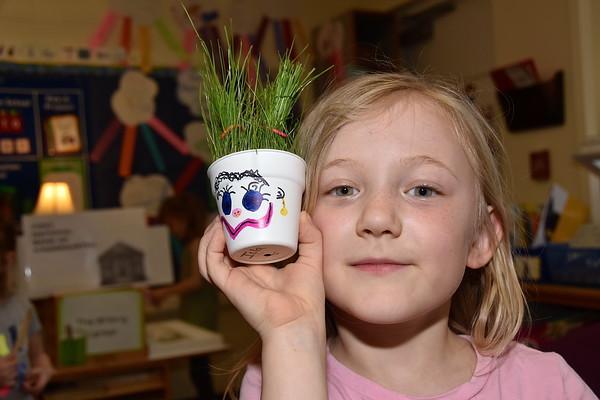 My Grass Monster Needs A Haircut photos by Gary Baker