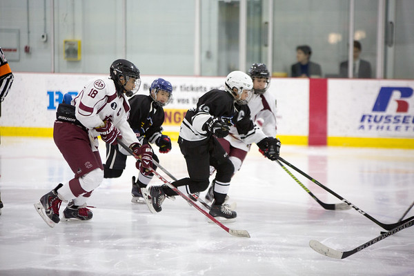 Pee Wee Hockey