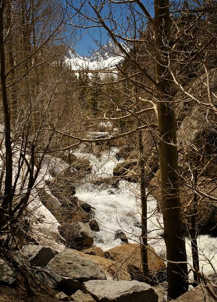 Bishop Creek below South Lake