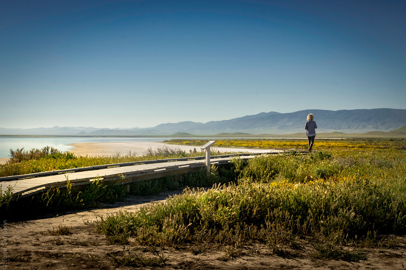 Soda Lake Boardwalk
