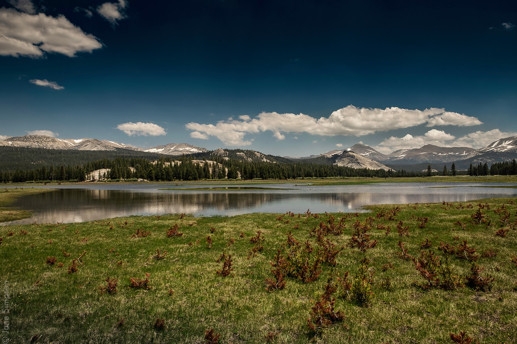 Tuolomne Meadows (Lake!), July 14, 2017