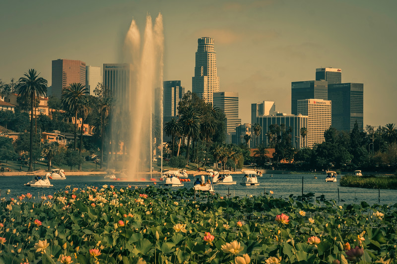 Echo Park Lake, June 2018
