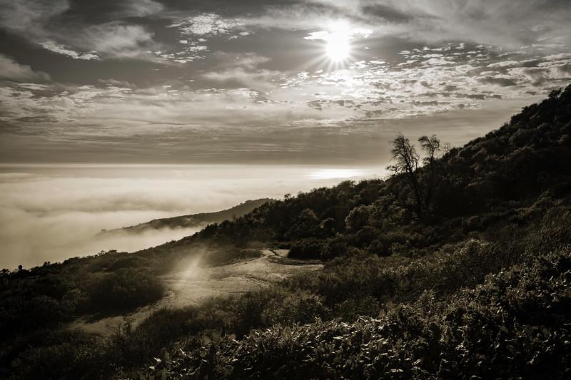 Fog Creeping Higher