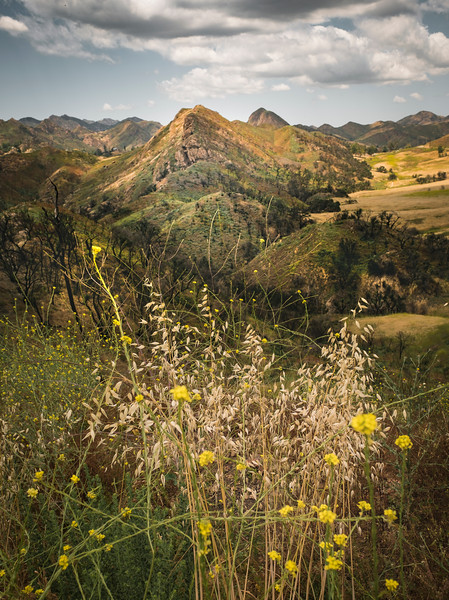 Buttes, May 18