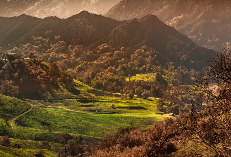 Mid-December Greening of the Valley