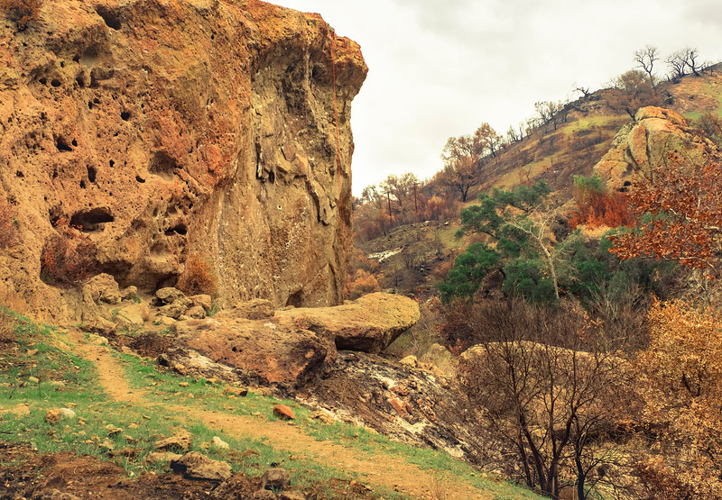 Apes Wall, January