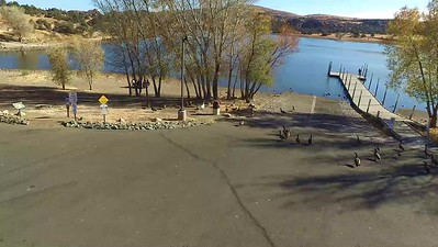 1  Who owns Watson Lake--the     Geese