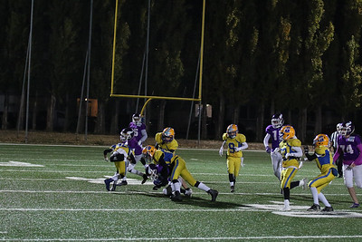 2017; AFBÖ; American Football; Graz Giants; Vienna Vikings; U13; Youth