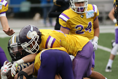 2017; AFBÖ; Mödling Rangers; American Football; Vienna Vikings; U17; Youth