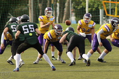 2017; AFBÖ; American Football; Danube Dragons; Vienna Vikings; U17; Youth
