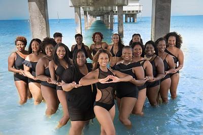 2017-Alabama State University Beta Eta 15 yr Reunion