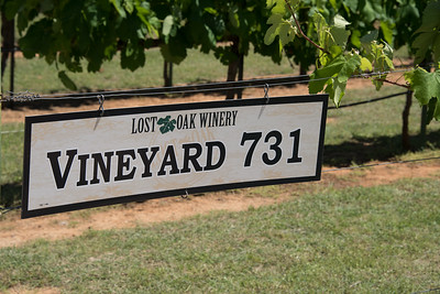 Lost Oak Winery................. April 23, 2017