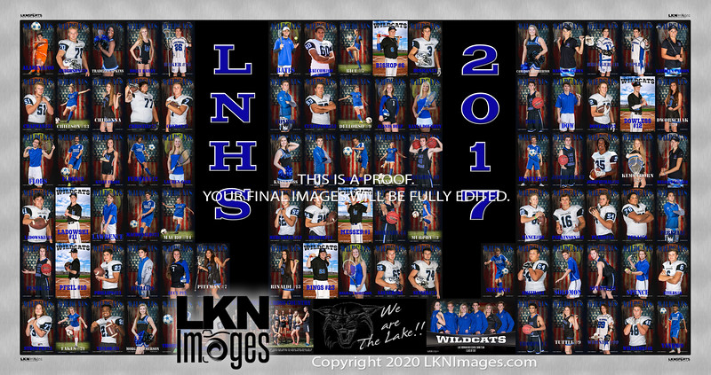 2017 LNHS Senior Banners poster