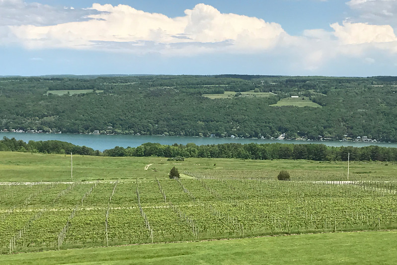 2017-05-31 Finger Lakes 6