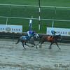 IvoryShores win-8338