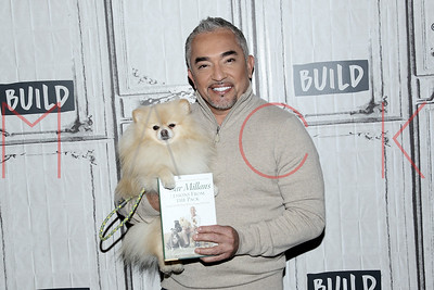 "New York, NY - February 17:  Cesar Millan visits the BUILD Speaker Series: Discussing ""Dog Nation"", New York, USA."