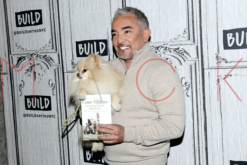 """BUILD Speaker Series: Discussing """"Dog Nation"""", New York, USA"""