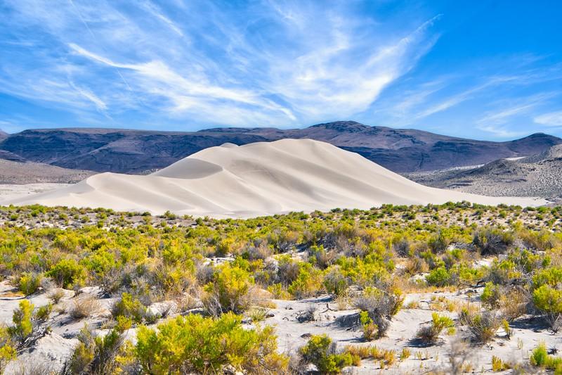 Sand Dune 1_DSC7737