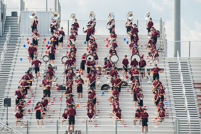 DS Tiger Band - Game 1, 2017