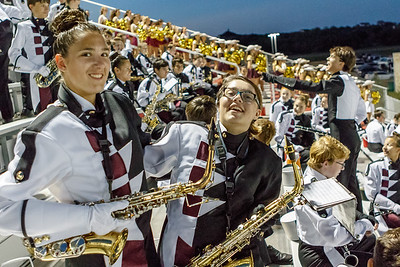 DS Tiger Band - Game 4, 2017