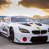 John Baldessari BMW M6 GTLM Art Car #19.