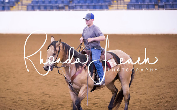 Virginia Classic Barrel Race Exhibition  Gallerie's 6-2-17