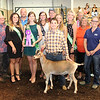 Rod Rose The Lebanon Reporter<br /> GRAND RESULT: Tanner Weakley stands with the Boone County 4-H Fair Queen's Court and representatives of the buyers who purchased his grand champion dairy goat for $700 at Thursday's 4-H Fair auction. participating buyers included Boone County Resource Recovery, North Salem State Bank, Edward Jones - Bret Bayston, James R. Nicholson DDS, Joe and Ann Newsom and Wathen Insurance.
