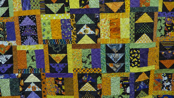 Raffle Quilt by Scrap Fever.  Pieced by members of Scrap Fever, top assembled by Vernita Dailey and machine quilted by John Putnam.  Size 56 X 80