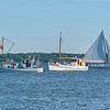 Buyboats THOMAS J.  ^  MURIEL EILEEN  ^  Skipjack NATHAN of DORCHESTER