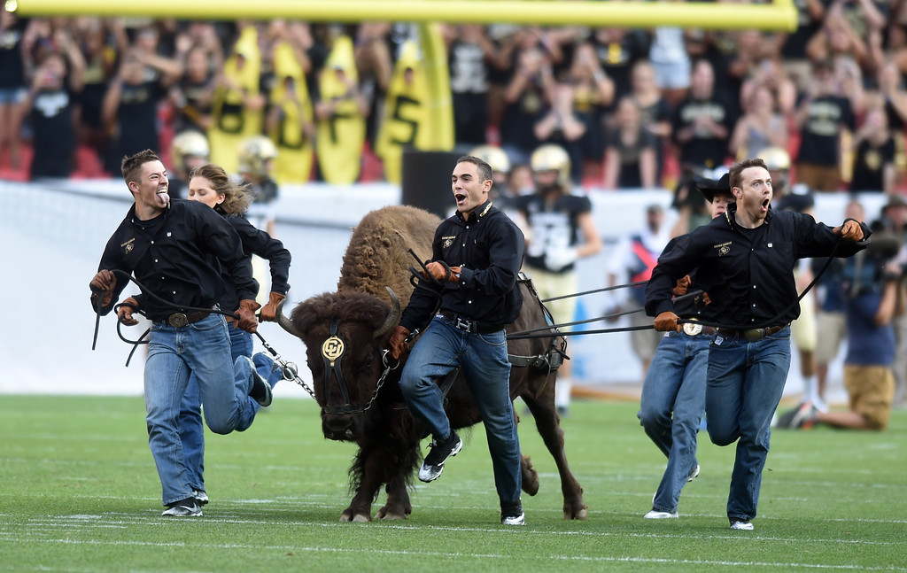 . Here comes Ralphie during the first half of the Rocky Mountain Showdown in Denver.  Cliff Grassmick / Staff Photographer/ September 1, 2017