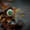 AngeliaPeterson_Halloween_wk44