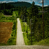 AngeliaPeterson_The Road6_wk21
