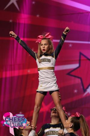 Absolute Cheer Energy Firebirds Flames Junior X-Small 2