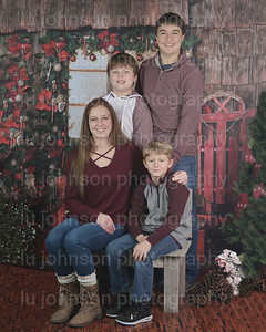 2017 Christmas Mini Sessions
