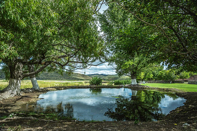 Cibolo Creek Ranch-6709