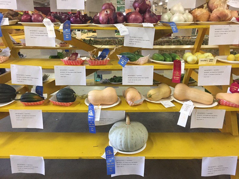 2017 County Fair and Apple Show