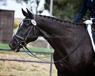 RAAC 17 Venzerro 0911
