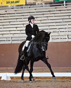 GSD 17 Ebano BRH 1166