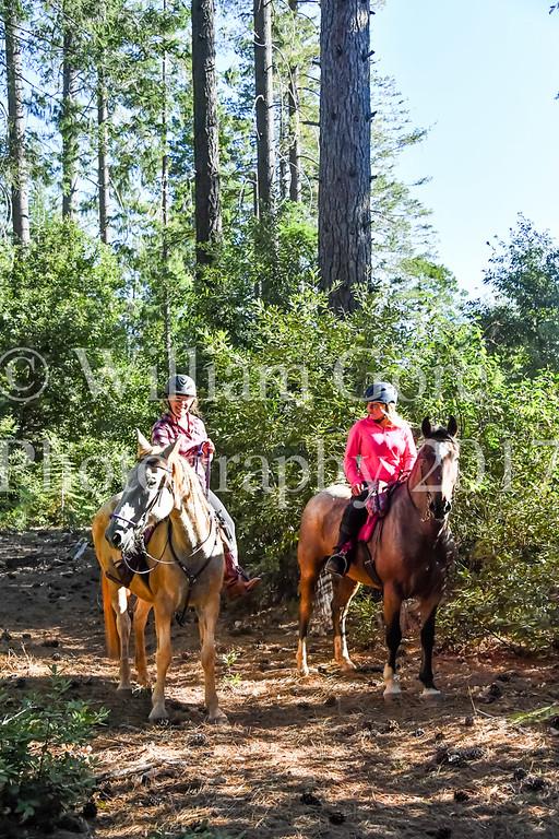 Kristina Chesterman Memorial Ride  ~ 2017