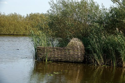 Reed woven basket in the water