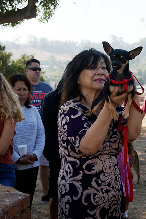 09-30-17 Blessing of the Animals Group 3