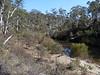 Cowra Creek