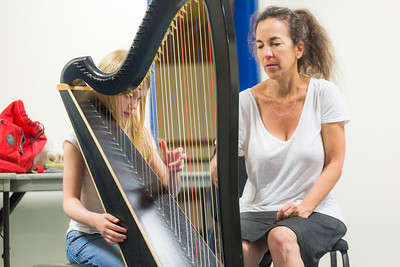 Private Harp lesson