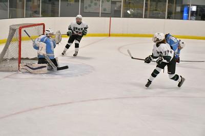 DSC_4780_Faye Stevens (right) unleashes a shot on goal