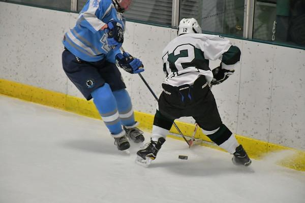 WUHS Girls Hockey 022218